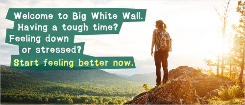 The internet community supports services like Big White Wall that bring people solace.