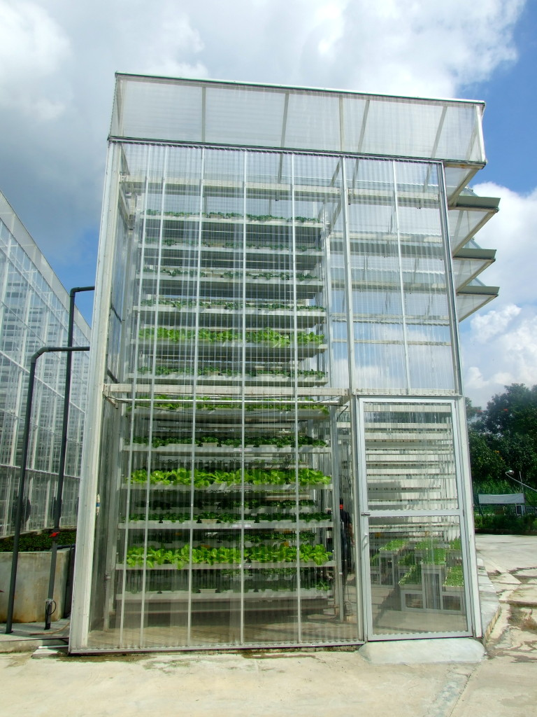 Vertical farm in Singapore / IPS Inter Press Service/ flickr.com